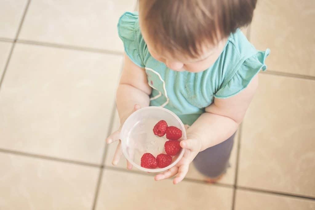 pautas alimentacion bebe 12 meses